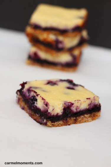 Blueberry Ribbon Cheesecake Bars