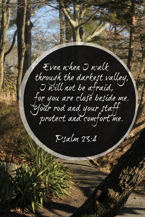 Psalm 23 4