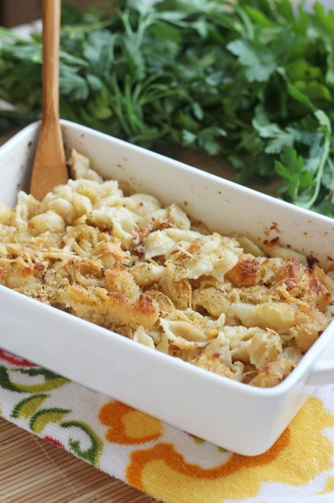 Creamy 4 Cheese Pasta Bake