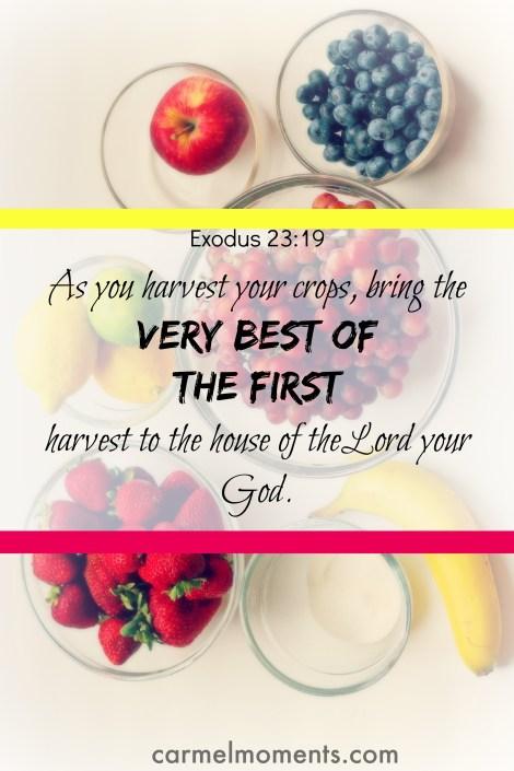 Exodus 23:19 Bible verse