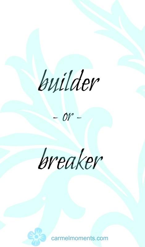 Builder or breaker