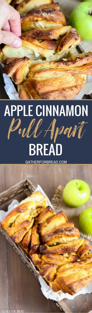 Apple cinnamon pull apart bread. Layers of homemade dough with chunks of real apple and cinnmon baked into this delicious pull apart loaf. Perfect for fall parties as an appetizer or dessert.