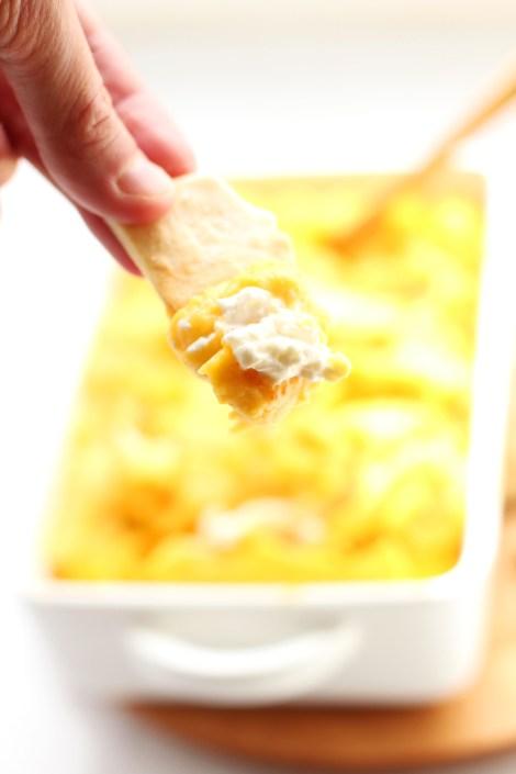 Parmesan Butternut Squash Dip
