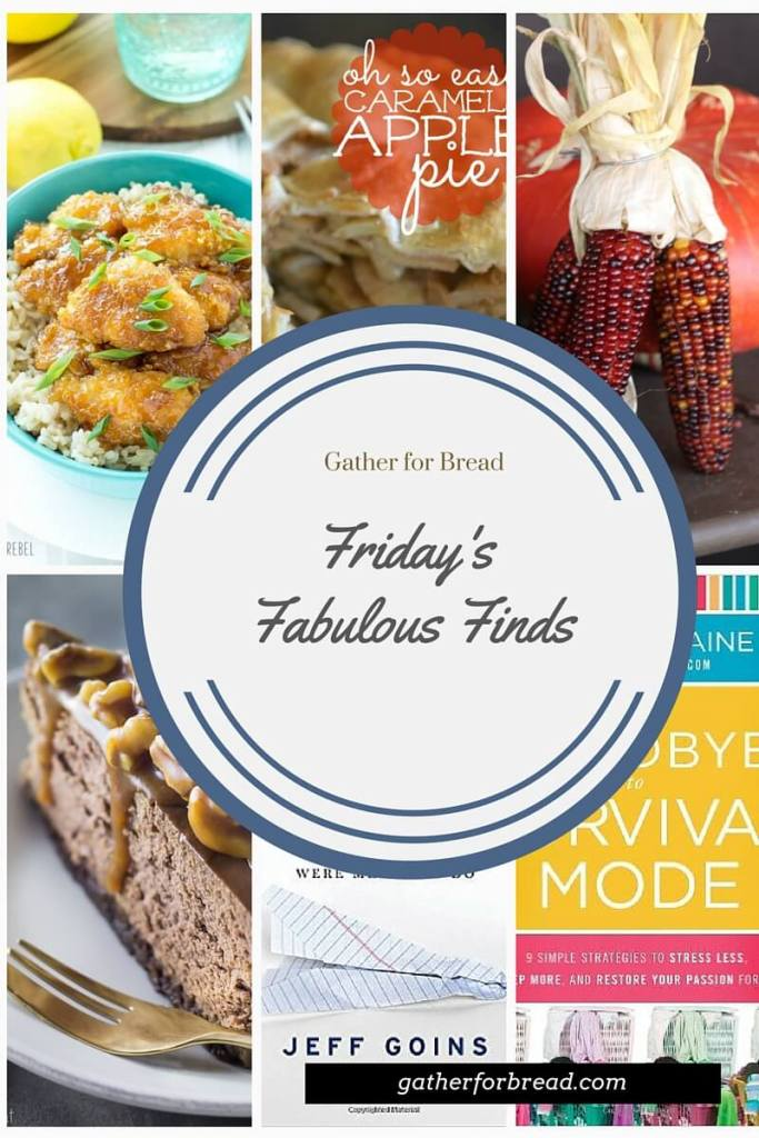 Friday's Fabulous Finds Week #1