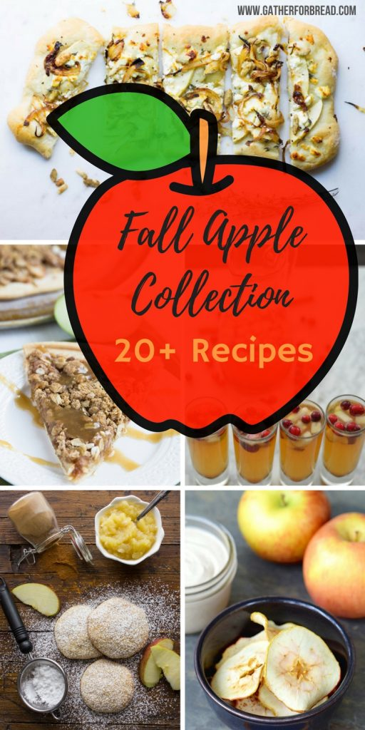 Fall Apple Collection - Over 20 recipes to get you hungry for apples this fall!