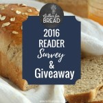 2016 Reader Survey & Giveaway
