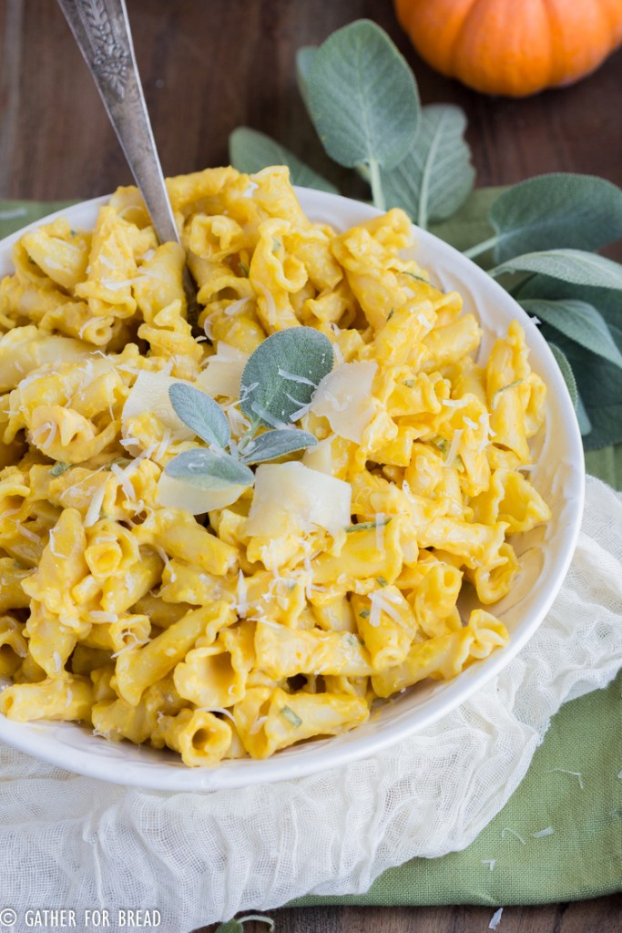 Pumpkin Pasta Bacon Cream Sage Sauce - Pasta and Bacon with a creamy pumpkin sage sauce. Delicious entree with flavors of fall. Recipe made with cream for a delicious sauce to go with your favorite pasta.