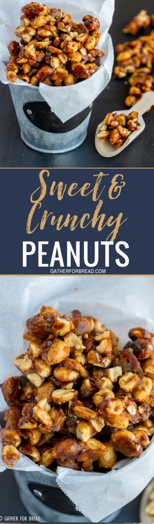 Sweet and Crunchy Peanuts - Glazed peanuts with a sweet homemade mixture of sugar and butter for easy snacking. Perfect for the holidays! Homemade gift from your kitchen to theirs.#giftidea #peanuts #homemade #gifts #sweet #nuts