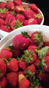 strawberriesforpie