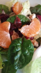 cran-orange-spinach-salad1