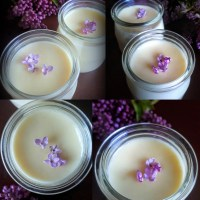 An Easy Old-Fashioned Creamy Dessert: Honey Lilac Posset