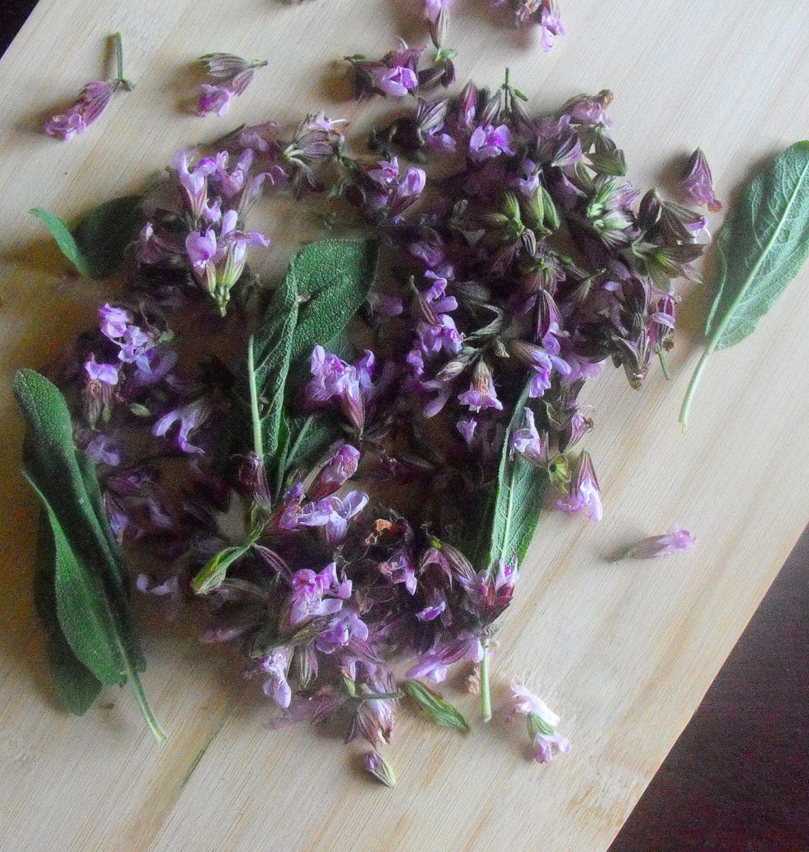 Savory Sage Blossom Pesto: A Culinary Spell for Youth, Beauty and Wisdom