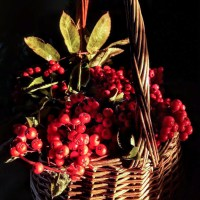 Rowan Berry Kitchen Witchery:  Two Recipes