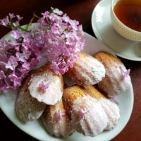 Lilac Madeleine Cookies: Remembrance of Fragrances Past