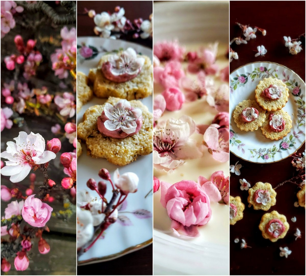 Foraging & Cooking with Ornamental Purple Plum Blossom: Spring Floral Confections!