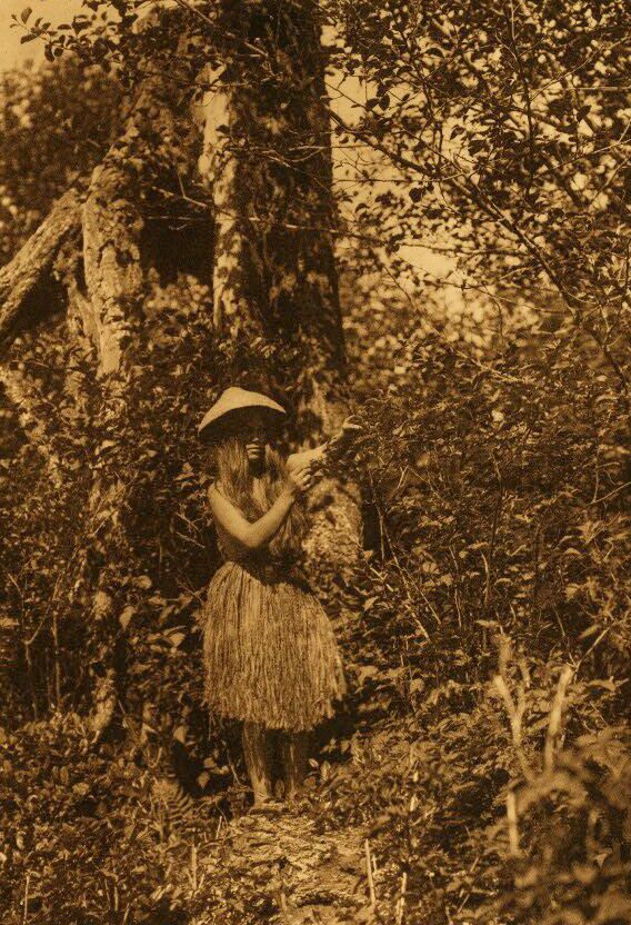 quinault-berry-picker.jpg