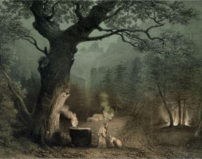 sacred-grove-of-druids