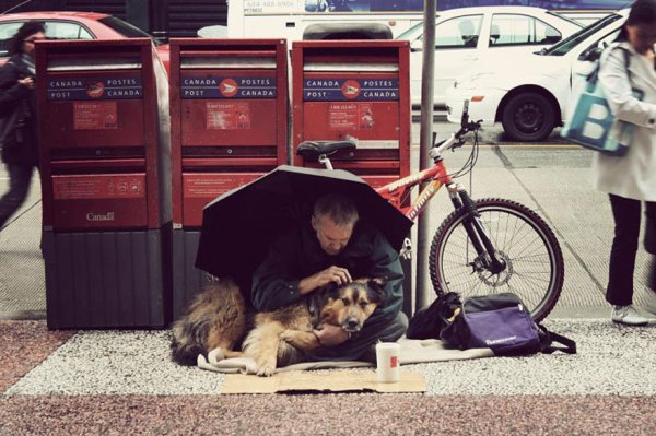 homeless-dogs-and-owners-27
