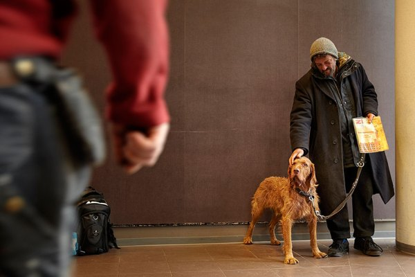 homeless-dogs-and-owners-8