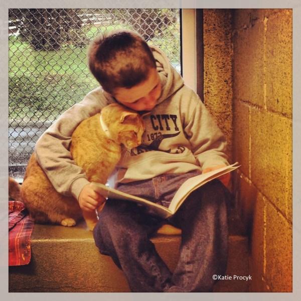 Colby melhorou as notas em dois pontos depois de começar a ler no abrigo, e ele já convenceu a mãe a adotar três gatos - e ele lê para eles todos os dias depois da escola.