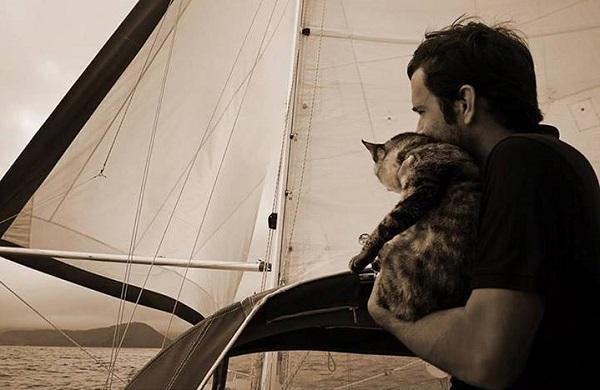 Gata adotada viaja o mundo com seus dois humanos8