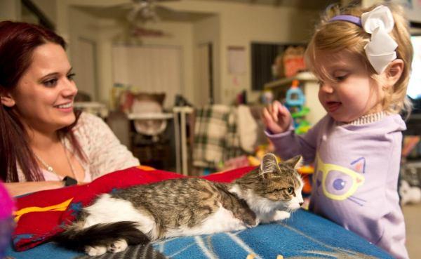 gatinha-tres-patas-adotada-menina-braco-amputado (5)