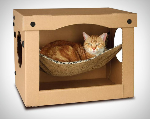 Best Toys For Apartment Cats
