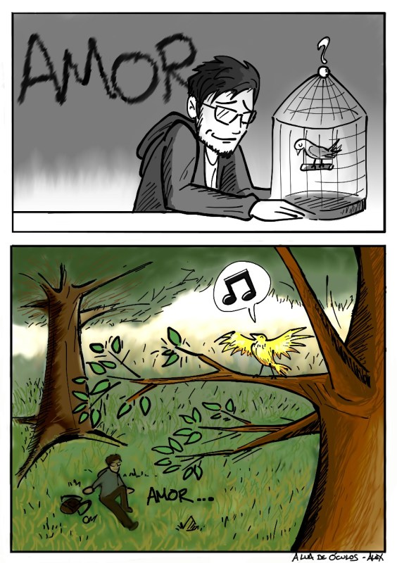 amor animais liberdade