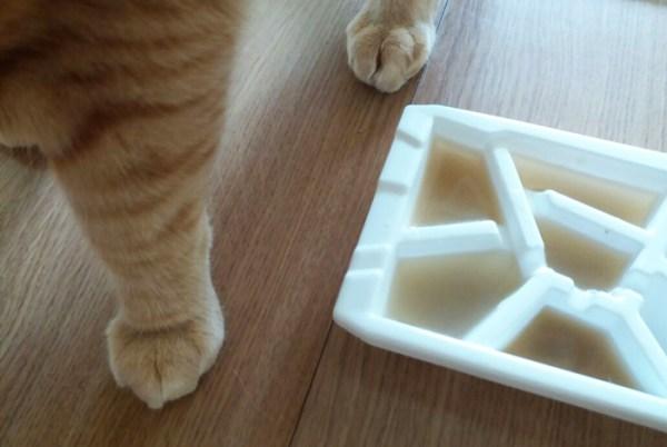 picole-gatos-como-fazer-5