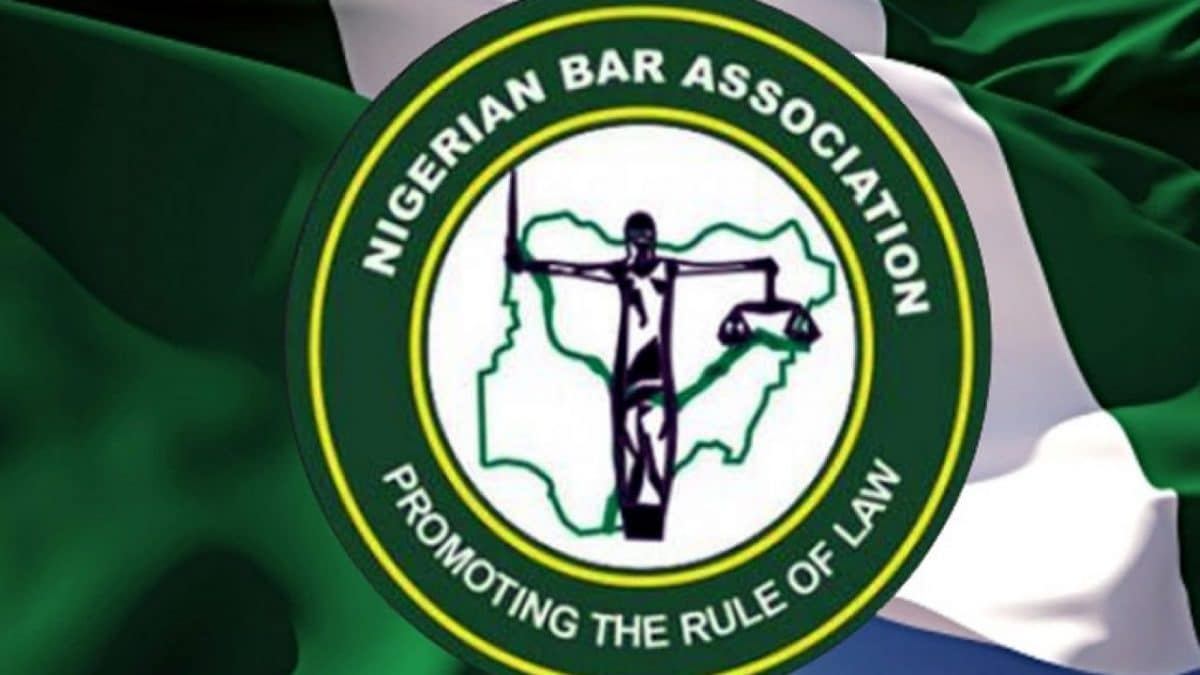 NBA blows hot as Buhari govt moves against End SARS protesters, sponsors