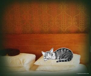 GA_hotel bed