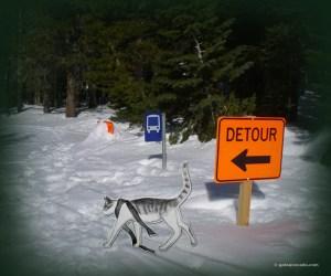 GA_snow detour_bw