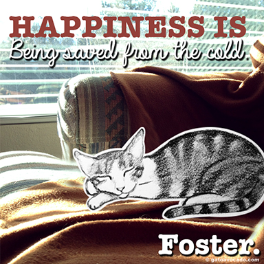 GA_foster happiness