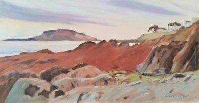 Looe Island by Lawrence Dyer