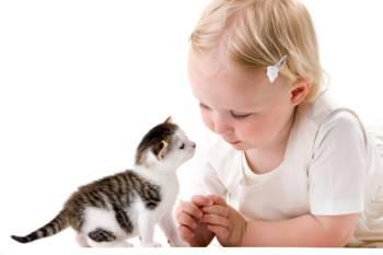 Gatos y niños.
