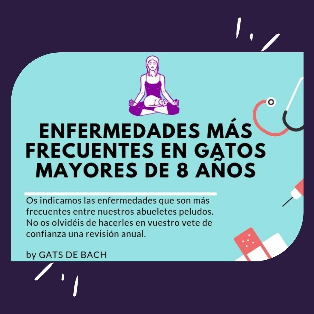 PORTADA REDES ENFERMEDADES + FREC