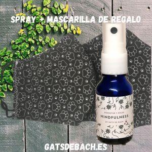 Mindfulness Spray y mascarilla