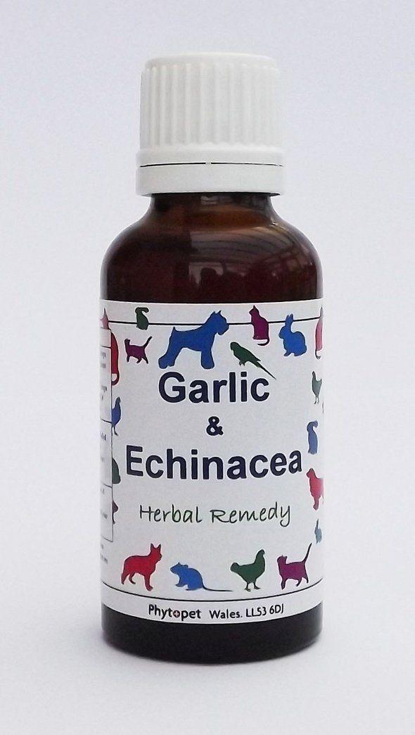 Garlic & Echinacea Refuerza Sistema Inmune