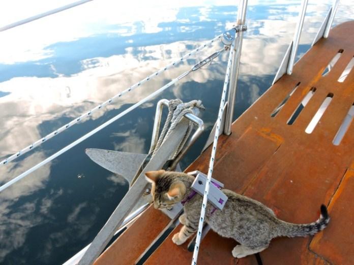 Keel in barca