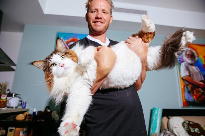 IIl grosso gatto Samson con Jonathan