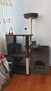 Mihu y Lala en su casa
