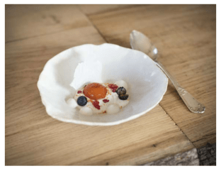joghurt, apricotsphere milkskin