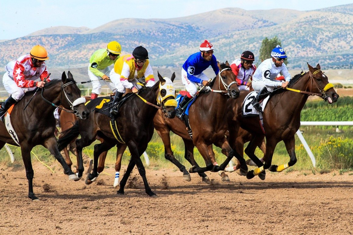 horse racing - sports betting