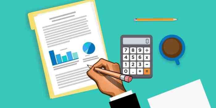data, analysis, accountant