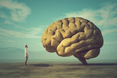 La práctica de meditación mindfulness cambia la estructura del cerebro en ocho semanas