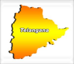 तेलंगाना राज्य को हरी झंडी मिलने से समर्थक खुश