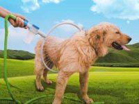 Hundedusjen 360 Image