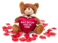 Teddybjørnen Sh*t B*tch You Is Fine Image