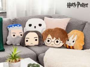 Harry Potter-puter Image