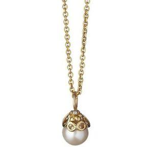 Gullanheng med perle Image